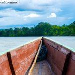 Puerto Misahualli, un paraíso del amazonas!!!