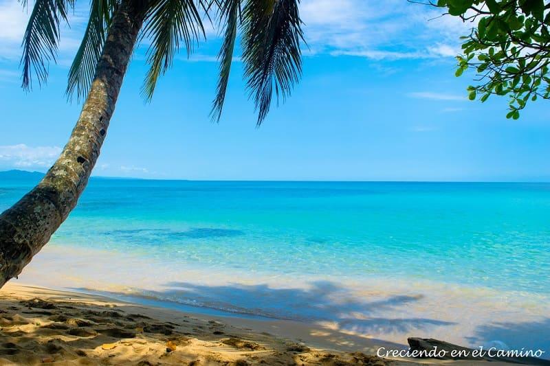 GUIA PARA RECORRER EL CARIBE DE COSTA RICA