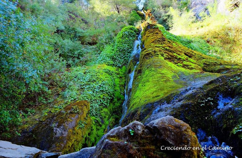 Cascada Los Tambores, Parque Nacional Los Alerces