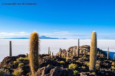 Los mejores lugares y destinos turísticos en Bolivia