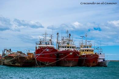 Que hacer y visitar en puerto deseado en argentina