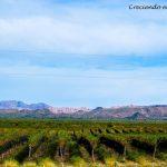 Que hacer y visitar en Mendoza y San Juan, Argentina