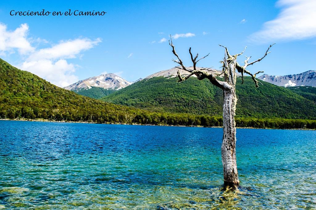 Los 15 lagos más lindos de Argentina!!!