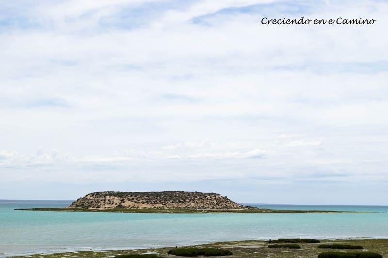 isla de los pajaros peninsula de valdes argentina