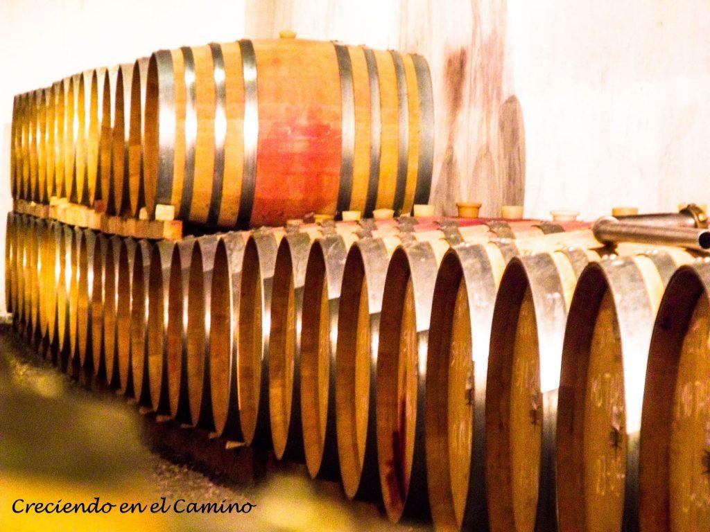 Degustando un rico vino cafayate ruta 40